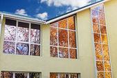Sonbahar içinde pencere eşiği — Stok fotoğraf