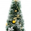 Christmas tree — Stock Photo #4569838