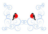 Bullfinch and a winter pattern — Stock Vector