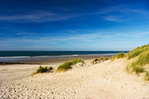 Ameland beach — Stock Photo