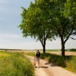 Dutch landscape with walking man — Stock Photo