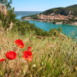 Poppies at the Saint Croix lake — Stock Photo