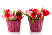 Baskets colorful tulips — Stock Photo