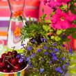 Summer in the garden — Stock Photo #4502088