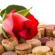 Cork from bottles with rose — Stock Photo