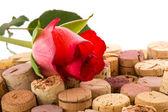 Cork van flessen met roos — Stockfoto