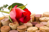 Korek z láhve s růží — Stock fotografie