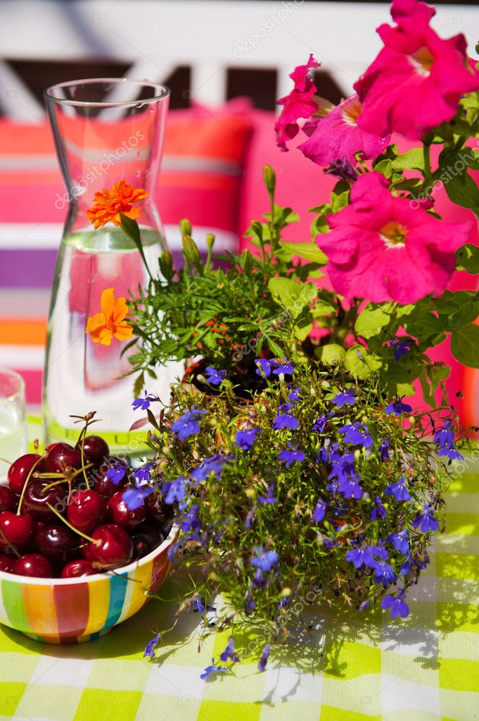Summer with fruit and flowers in the garden — Stock Photo #4502088