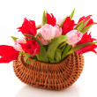 Stock Photo: Wicked cane basket tulips