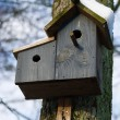 Bird house with snow - Stock Photo