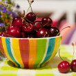 Cherries in the summer garden — Stock Photo