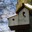 Bird house with snow — Stock Photo