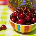 Cherries in the summer garden — Stock Photo #4739380