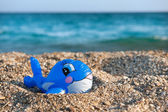 Funny toy fish at the beach — Stock Photo