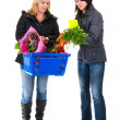Two shopping woman in the supermarket — Stock Photo