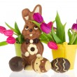 Stock Photo: Chocolate easter hare