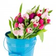 Colorful bouquet tulips in bucket — Stock Photo