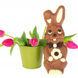 Chocolate easter hare — Stock Photo