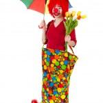 Funny clown — Stock Photo #5266128
