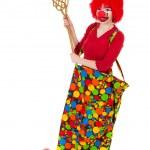Funny clown — Stock Photo #5266131