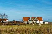 Dutch landscape — Stock Photo