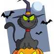 Happy Halloween Greeting Over A Cat And Pumpkin — Stockfoto