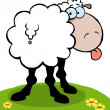 Cartoon Sheep Sticking Out His Tongue — Stock Photo
