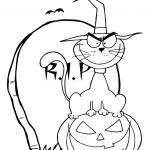 Outlined Halloween Cat on Pumpkin Near Tombstone — Stock Photo #4726772