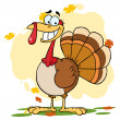 Stock Photo: Turkey Cartoon Character