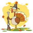 Turkey With Pilgrim Hat and Musket — Stock Photo
