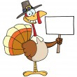 Happy Turkey With Pilgrim Hat Holding A Blank Sign — Stockfoto