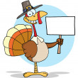 Turkey With Pilgrim Hat Holding A Blank Sign — 图库照片