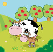 Baby And Mommy Cow In A Pasture Near An Orchard — Stock Photo
