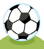 Soccer Ball With A Blue Outline On A Grassy Hill — 图库照片