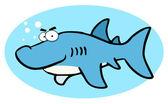 Grumpy Blue Shark In A Blue Oval — Stock Photo