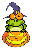 Frog With A Witch Hat In Pumpkin — Stock Photo