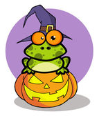 Halloween Frog With A Witch Hat In Pumpkin — Stock Photo