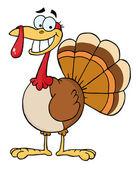 Turkey Mascot Cartoon Character — Stock Photo