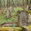 Old gravestones — Stock Photo #4152525