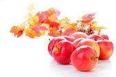 Gala-äpfeln — Stockfoto