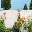 Graves of fallen soldiers in World War I at Tyne Cot cemetery in Passchenda — Stock Photo