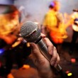 Stock Photo: Microphone