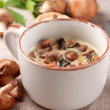 Mushroom soup — Stock Photo #4079127