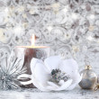 Christmas still life — Stock Photo #4405646