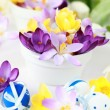 Spring table decoration — Stock Photo
