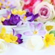 Spring table decoration — Stockfoto