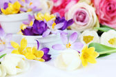 Spring table decoration — Foto Stock