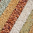Mixture of dried lentils, peas, soybeans, beans - background — Stock Photo