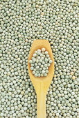 Wooden spoon and dried green split peas — Stock Photo