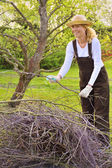 Young woman cleaning tree limbs — Stock Photo
